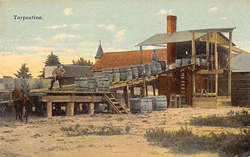 turpentine-factory-manufacturer-industry-antique-postcard-j49584