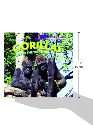 Gorillas: Life in the Troop (Animal Families)