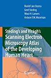 img - for Steding's and Vir gh's Scanning Electron Microscopy Atlas of the Developing Human Heart book / textbook / text book