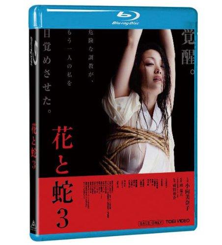 [小向美奈子 本宮泰風 小松崎真理 琴乃 睦五朗] 花と蛇3【Blu-ray】
