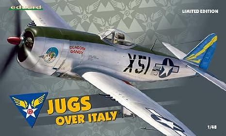"""1/48 Limited Edition P-47D """"cruches sur l'Italie"""" (Japon import / Le paquet et le manuel sont ?crites en japonais)"""