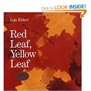 Red Leaf, Yellow Leaf Lois Ehlert