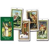 TAROT OF DRUIDS MINI DECK (cards): Mini Tarot
