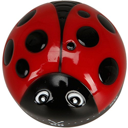 niceeshop(TM) Plastique Coccinelle Ladybird Beetle Forme 60 Minute Cuisine Bricolage Minuterie de Cuisson