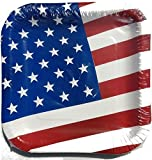 Patriotic American Flag Disposable Plates, 14ct (2)