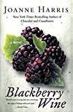Blackberry Wine: A Novel