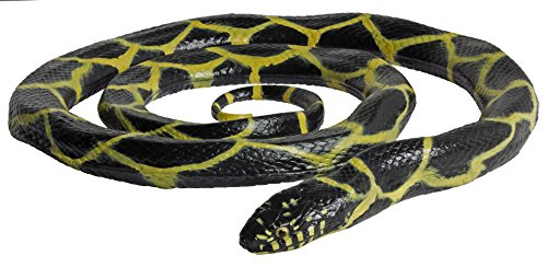 Safari 257929 - Serpente Reale