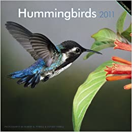 Hummingbirds 2011 Square 12X12 Wall Calendar: BrownTrout