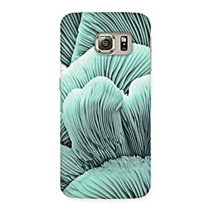 Delighted Shell of Ocean Back Case Cover for Samsung Galaxy S6 Edge