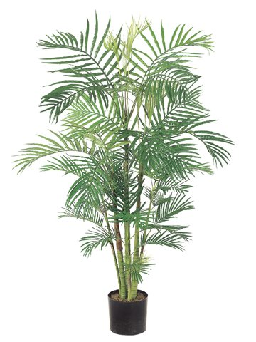 Pack of 2 Artificial Potted Tropical Areca Palm Trees 6′