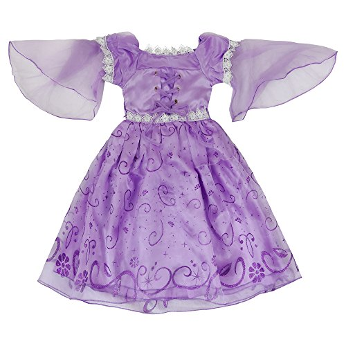 Girls Purple Dress: Princess Rapunzel or Sofia Halloween Costume: Dress Up Gown: Ages 2-3 (Cinderella Movie Deluxe Child Costume)