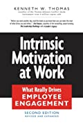 Intrinsic Motivation at Work (0)
