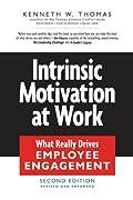 Intrinsic Motivation at Work (0)
