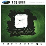 Raw Power: Surfacing 1 by Trey Gunn [Music CD]