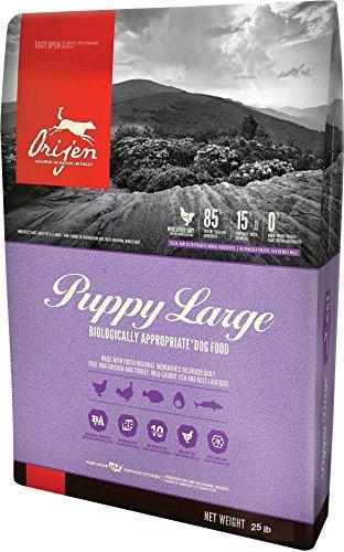 Orijen Large Puppy Formula Dog Food, 25 lb (Orijen Puppy Food compare prices)