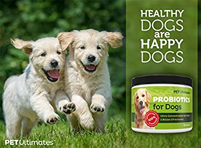#1 Probiotics for Dogs - On Sale! Guaranteed Diarrhea Relief - Has the 13 Best Pet Digestive Remedies plus FREE Added Enzymes in One Powerful Powder That Dogs Love - Controls Itching, Scratching, Hot Spots, Excessive Shedding, Gas and More - Puts Back Wha