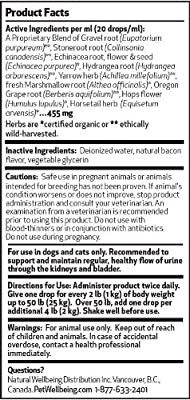 Pet Wellbeing - Urinary Gold - A Natural, Herbal Supplement for Dog Urinary Tract Health - 2 oz Liquid Bottle