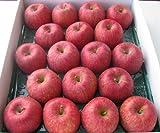 山形県東根市若木産 サンふじりんご/10kg/18個入り2段重ね