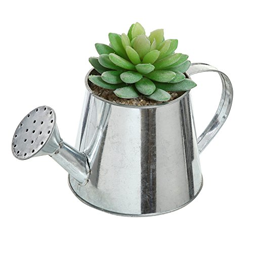Small Watering Can Design Metal Succulent Plant Pot