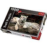 Trefl - 58414 - Puzzle Classique - Tigres Bengale - 1500 Pièces
