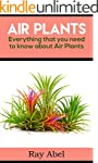 Air Plants: Everything that you need...