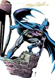 img - for Batman Illustrated by Neal Adams: Volume 3 book / textbook / text book