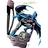 Batman Illustrated by Neal Adams: Volume 3 ~ Denny O'Neil