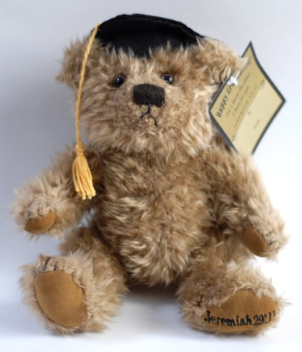 Graduation Bear