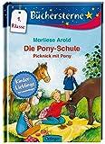 Die Pony-Schule. Picknick mit Pony: Mit 16 Seiten Leserätseln und