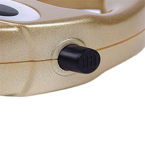 Peting Oro e argento a colori a scomparsa Guinzaglio Durevole confortevole guinzagli animale domestico con nylon ad alta resistenza