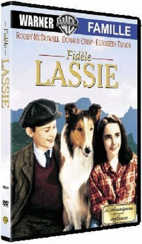 No Name FidELE Lassie Dvd Edition simple