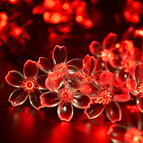 Ledertek Solar Fairy String Lights 21Ft 50 Led Red Blossom Decorative Gardens, Lawn, Patio, Christmas Trees, Weddings, Parties, Indoor And Outdoor Use (50 Led Red)