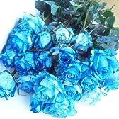 花with-heartブルーのバラの花束20本国産薔薇に着色したブルーローズ結婚記念日、お誕生日のサプライズギフトに