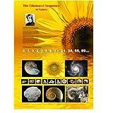 Fibonacci Sequence Poster
