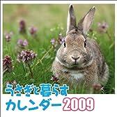 うさぎと暮らすカレンダー2009 <壁掛け> ([カレンダー])