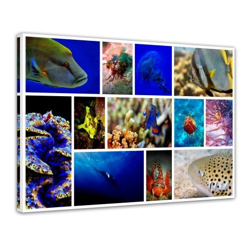 Bilderdepot24 Leinwandbild Unterwasser Collage - 70x50 cm 1 teilig - fertig gerahmt, direkt vom Hersteller
