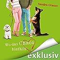 Wo das Chaos hinfällt Hörbuch von Sandra Grauer Gesprochen von: Ulrike Kapfer