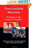 Non-Leninist Marxism: Writings on the Worker's Councils