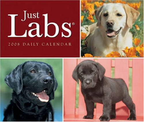 Just Labs 2008 Box Calendar - Buy Just Labs 2008 Box Calendar - Purchase Just Labs 2008 Box Calendar (2008 Calendars, Office Products, Categories, Office & School Supplies, Calendars Planners & Personal Organizers, Desktop Calendars & Supplies, Desk Calendars)
