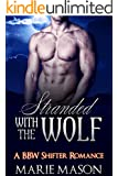Stranded With the Wolf (A BBW Paranormal Romance) (The McCall Brothers' Trilogy Book 1) (English Edition)