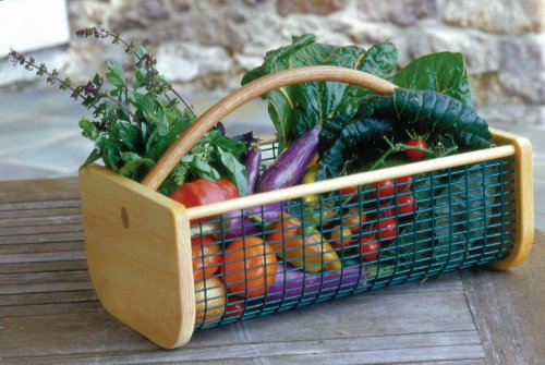 Basket Making Supplies Maine : Plants for dallas your source the best landscape