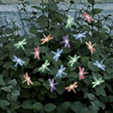 Smart Solar 3706MR20 Solar Light String, 20 Multi Color LEDs with Translucent Dragonfly Covers
