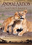 echange, troc Animal Nation - Nature's Babies: Bonding in the Wild [Import anglais]