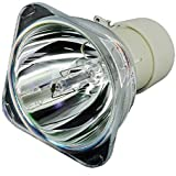 Kingoo Replace Projector Bulb Lamp SP-LAMP-039 For ASK A1100 A1200 A1300