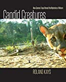 Candid Creatures: How Camera Traps Reveal the Mysteries of Nature