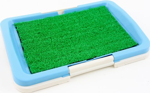 """Puppy Potty Trainer (Blue) Indoor Grass Training Patch - 3 Layers - 18"""" X 13"""" front-887657"""