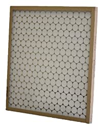 Glasfloss Industries PTA12161 PTA Series Heavy Duty Disposable Panel Air Filter, 12-Case