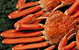 迫力の3kg送料無料!【ボイル姿ズワイガニ大サイズ5ー6尾】福袋[冷凍]身入り抜群プリップリのカニ脚と濃厚な蟹みそ!フォーシーズン