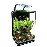 Marineland Contour Glass Aquarium Kit with Rail Light, 5-Gallon