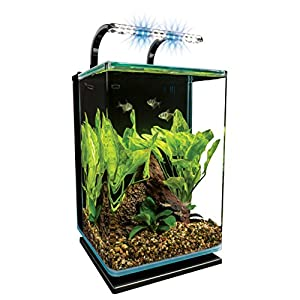 Amazon.com : Marineland Contour Glass Aquarium Kit with ...